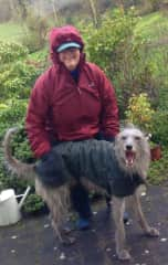 """My walking buddy, Pip, from Ireland. He's a """"lurcher"""", and needed to be walked 2x every day...it was COLD and wet there in January, but we didn't care!"""