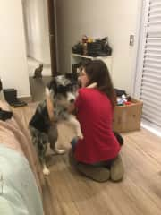 This was taken whike we were moving. The dog's name is Maya and she loves to hug, Moana (my lovely cat in the background) was little jealous, so she came for a cuddle right after.