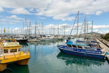 Marina Bay where you can go dolphin spotting