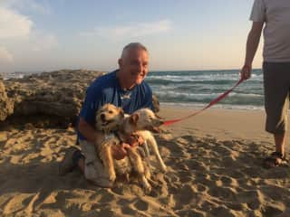 Peanut and Pongo at the beach