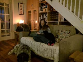 House sitting in the West of Ireland