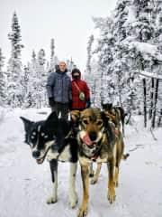 Enjoying the dogs in Yellowknife