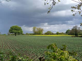 View across the fields behind the house