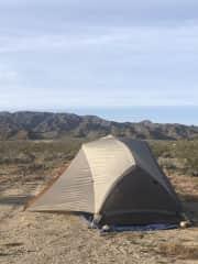 Camping near Joshua Tree