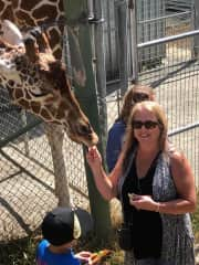 Love going to zoos, wildlife parks, etc.