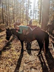 Trail riding in Georgia