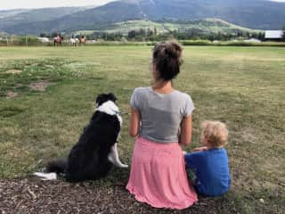 Puck, Milo and Mette in Coldstream, BC