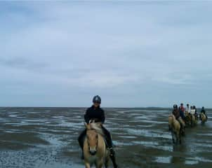 Riding on the mud flats of the North Sea with clients from US