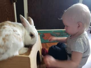 My Grand & her Bunny