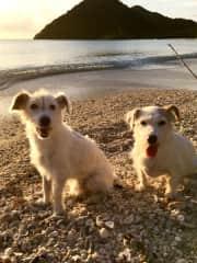 Sam and Elly on the beach