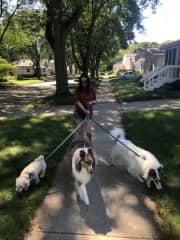 Daily walks are always important!