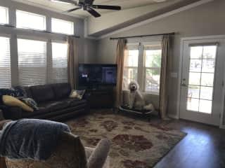 Ella in the livingroom