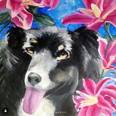 a commission of a client's dog in Burlington VT
