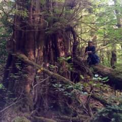 Hiking in Haida Gwaii, BC