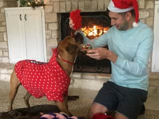 Alex opening Christmas gifts for Yager, who spent the holidays relaxing by the fireplace with us :)
