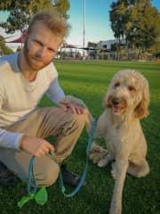 Pet sitters with Alfie in Murrambeena