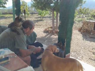 Roy with our furry family in Spain.