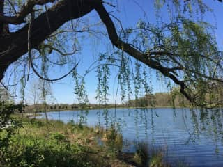 Lake Artemisia, easy access from walking/bike trails