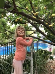 We love coming home to our pets and garden (especially our wonderful apricot tree!)