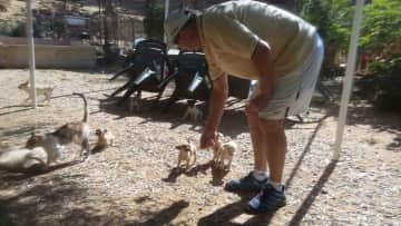 Simon caring for dogs, in Spain, little pups, after rescuing a goat that needed water!