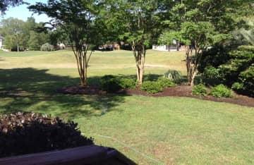 Backyard and 10th fairway