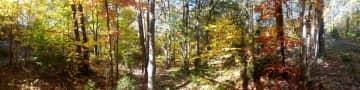 Hiking Mount Monadnock