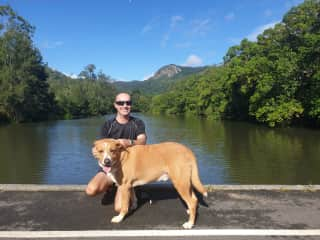 Friends in Cairns recommended us to their neighbours. 3 weeks looking after this gorgeous big fella - 'Bluey' - the most well tempered laid back dog who loved his daily walks along the creek.