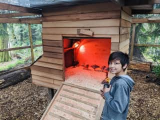 Chicken coop designed and built  for our 12 chickens. Colton is proud to have helped build this home for them.