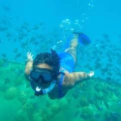 Nicole diving like a fish