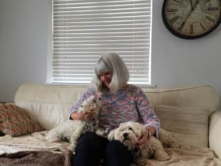 Lily and Benny, housesit near Guildford