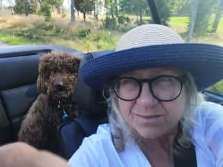 Me and my dog Lilly, Cabrio ride in the svedish summer