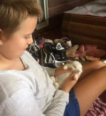 Our daughter caring for baby bunny