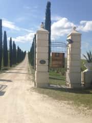 Fantastic Winery in Umbria