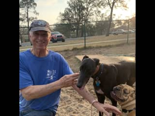Paul with Junebug, the rescued greyhound, making friends at the dogpark