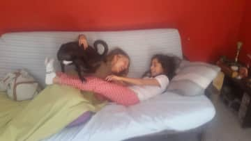 Share memorable moments with our nephews. She is Valentina, our Mexican niece, who stayed at home and shared her sofa with Perrita
