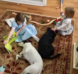 Reading to the dogs