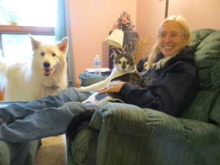 Laura with our dog Koda and Jake (the cat we were petsitting)