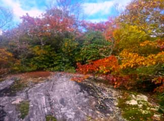 Hiking - Blue Ridge Mountains NC
