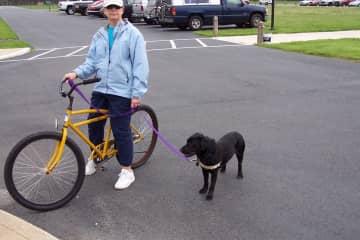 BJ & Arley foster dog