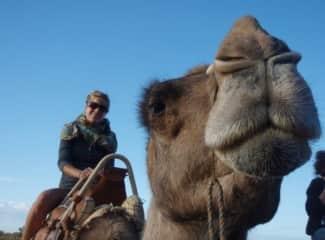Natasha and a handsome Camel in Australia