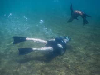 Oscar with a sea Lion on Galapagos Island