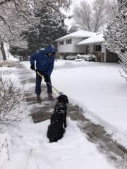 Lily supervising Jim's shoveling technique during Colorado pet sit
