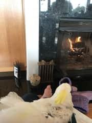 Kui, enjoying the fireplace