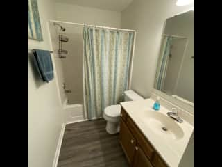 Guest bathroom. All linens provided.