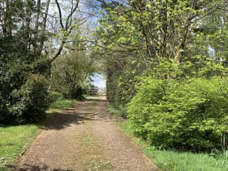 Up the garden path ...