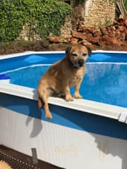 Brian sitting on the edge of our pool