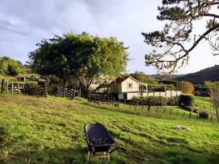Working in a farm in New Zealand