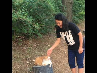 Lea just can't pass through without saying hello to animals.