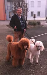 Gil with our poodles