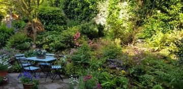 Front courtyard garden